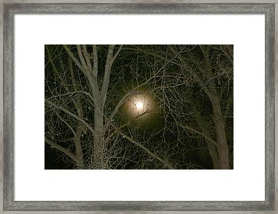 Framed Print featuring the photograph Moon Through The Trees by Laurel Talabere