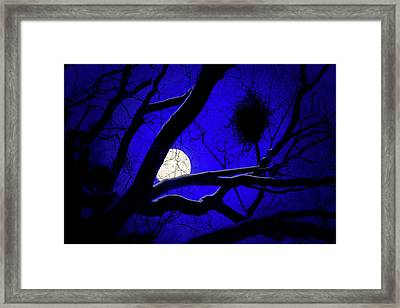 Moon Wood  Framed Print