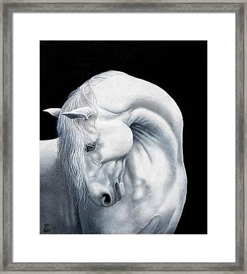 Moonlight Framed Print by Bob Fox