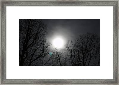 Moonlight Carolina Framed Print