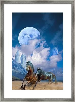 Moonlight Horses Framed Print by Pavlos Vlachos