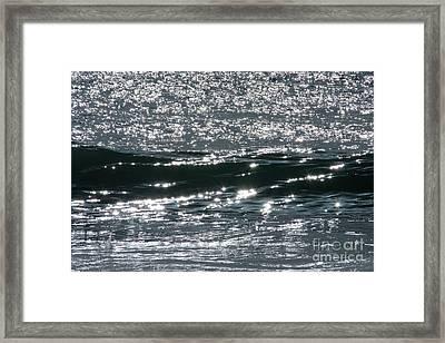 Moonlight Shimmer Framed Print