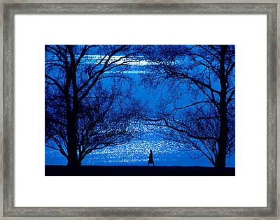 Framed Print featuring the photograph Moonlight Stroll by Mike Flynn