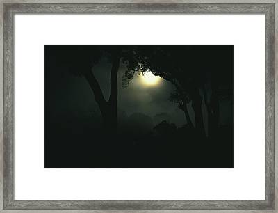 Moonlight Through Fog And Silhouetted Framed Print by Tim Laman
