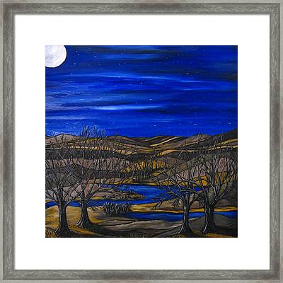 Moonlit Night Framed Print