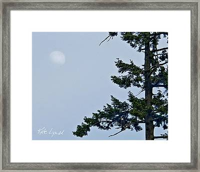 Moonrise Vigil Framed Print