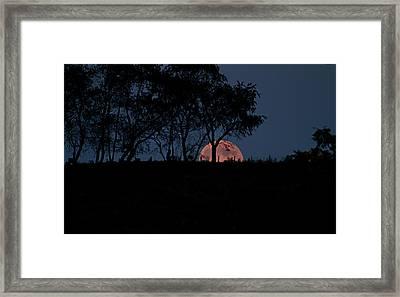 Moonscape Framed Print by Betsy Knapp