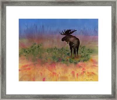 Moose On The Tundra Framed Print by Carolyn Doe