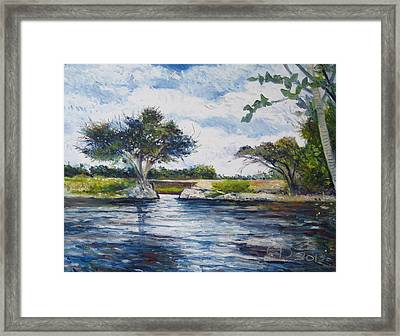 Mopani Bridge Maun Botswana Framed Print by Enver Larney