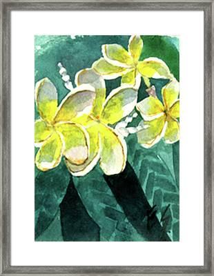 More Plumeria Framed Print