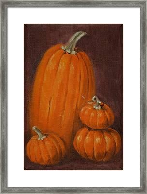 More Pumpkins Framed Print