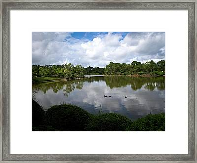 Morikami Ducks Framed Print