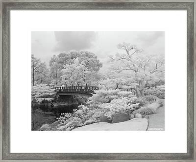 Morikami Japanese Gardens Framed Print