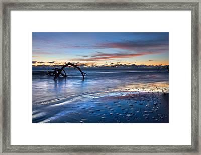 Morning Calm At Driftwood Beach Framed Print by Debra and Dave Vanderlaan