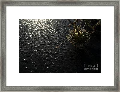 Morning Comes To All Framed Print by The Stone Age
