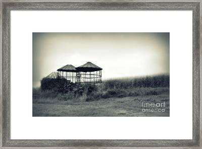 Morning Corn 2 Framed Print by Perry Webster
