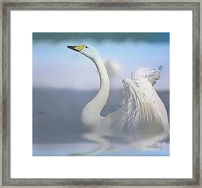 Morning Dance Framed Print by Jerry L Barrett
