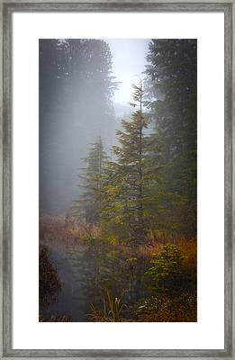 Morning Fall Colors Framed Print by Mike Reid