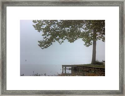 Morning Fog Framed Print by Barry Jones