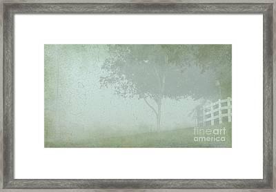 Morning Fog Framed Print by Judi Bagwell