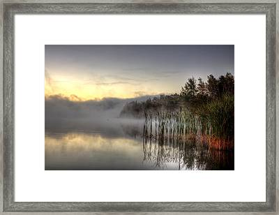 Morning Fog With A Loon Framed Print by Gary Smith