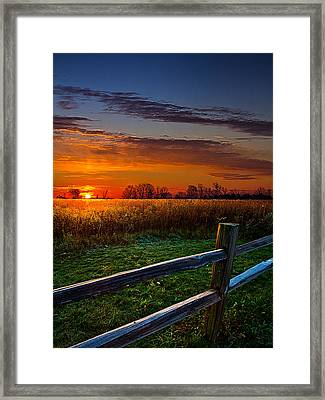 Morning Fresh Framed Print by Phil Koch