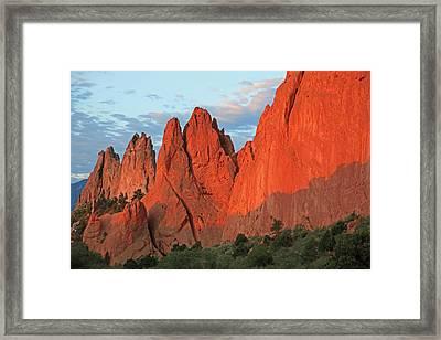 Morning Glory Framed Print by Sam Amato
