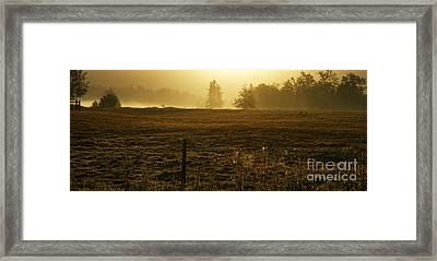 Morning Glow Framed Print by Terrie Taylor