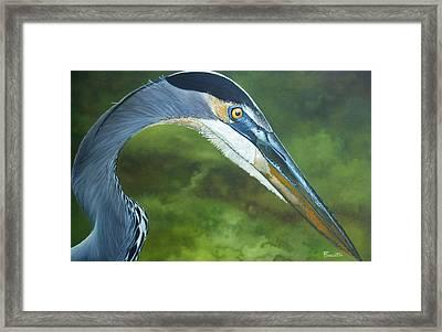 Morning Hunt Framed Print by Jon Ferrentino