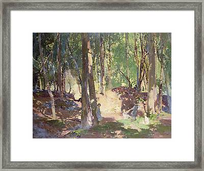 Morning In The Woods Framed Print by Harry Watson