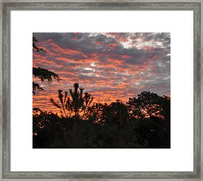 Morning Inspiration Framed Print