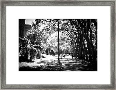 Morning Jog Framed Print by Jason Heckman