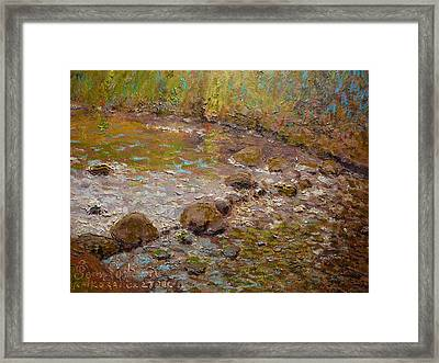 Morning Light Kaikorai Stream Framed Print