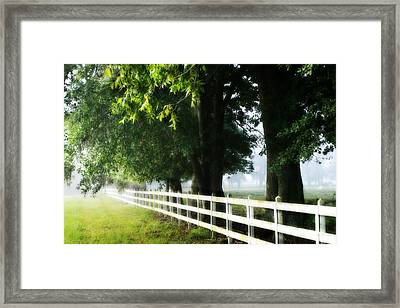 Framed Print featuring the photograph Morning Light by Mary Hershberger
