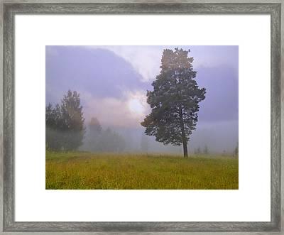 Morning Ligut-3 Framed Print by Vladimir Kholostykh