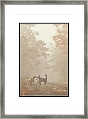 Morning Meeting Framed Print