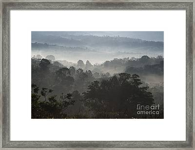 Morning Mist In Panama's Highlands Framed Print by Heiko Koehrer-Wagner