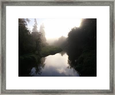 Morning Mist Framed Print by Kristina Edwards
