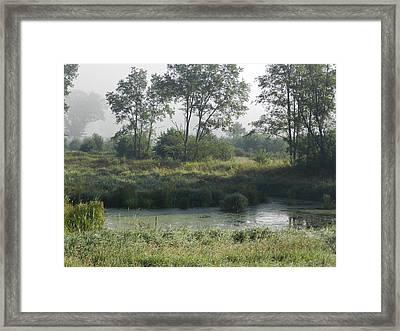 Morning Mist On Marsh Framed Print by Dennis Leatherman