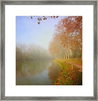 Morning Mist Framed Print by Paul Grand Image