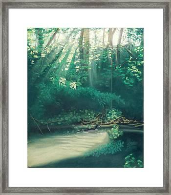 Morning On The Creek Framed Print by Bernadette Kazmarski