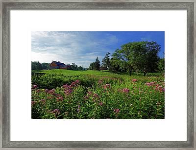 Morning On The Farm Framed Print
