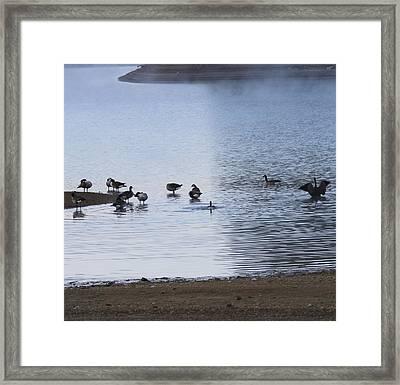 Morning On The Lake Framed Print