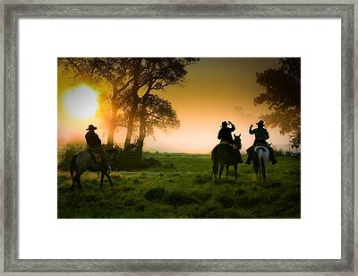 Morning Ride Framed Print by Toni Hopper