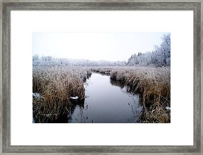 Framed Print featuring the photograph Morning Rime by Steven Clipperton