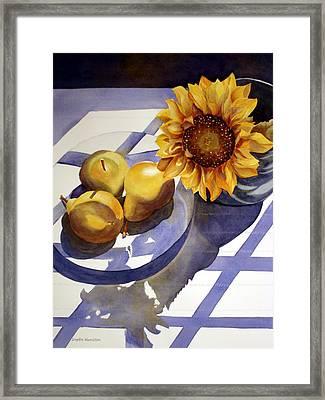 Morning Shadows Framed Print by Daydre Hamilton
