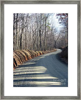 Morning Shadows On The Forest Road Framed Print