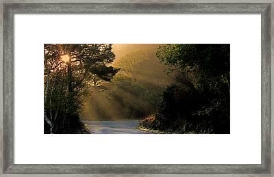 Morning Walk Framed Print by Barbara Walsh