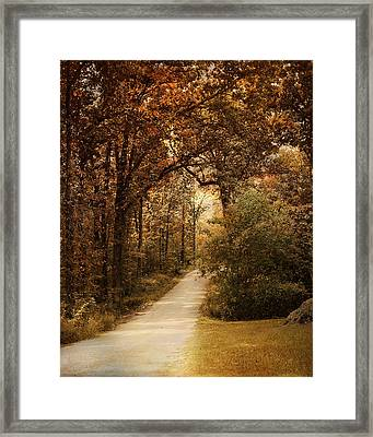 Morning Walk Framed Print by Jai Johnson