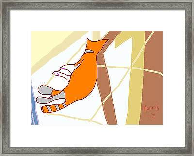 Morris At The Window Framed Print by Anita Dale Livaditis
